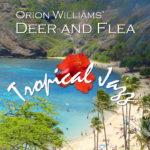 New Album with Guitar and Ukulele, Tropical Jazz